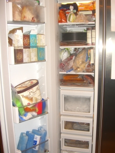 Kitchen Freezer