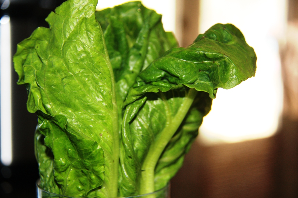 Say no to limp lettuce! How to shop and cook smart | The ...